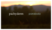 Pachyderm - Parabola | Blu-ray title